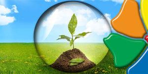 ISO 14001 Hibiscus Plc image