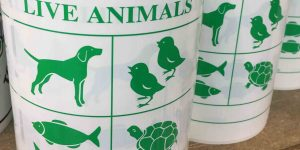 live animal label